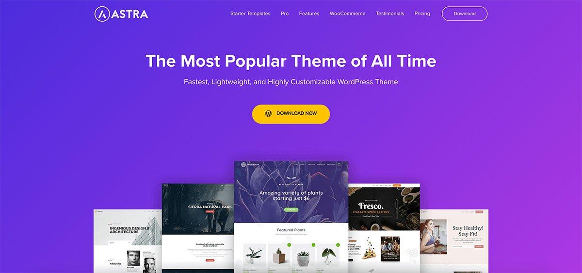 astra-Wordpress-themes